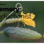 Confessions of a Memory Perfectionist