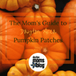 A Mom's Guide to Dayton Area Pumpkin Patches {2017}