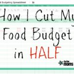 How I Cut my Food Budget in HALF