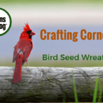 Crafting Corner: Bird Seed Wreath