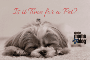 Is it Time for a Pet-