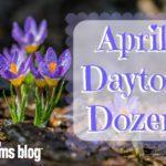 April Dayton Dozen