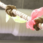 Lessons From the Climbing Rope