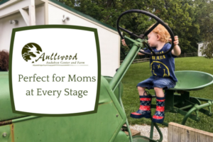 Perfect for Moms at Every Stage
